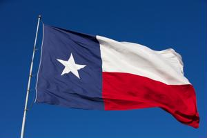 An appeal has been filed against the Texas hold on immigration reform.