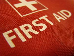 As a part of the New York emergency preparedness program, citizens received first aid kits.
