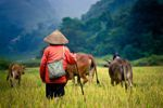 China: natural, hidden gems worth visiting - Adventure Travel News