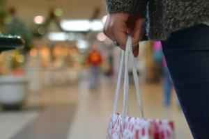 Brick-and-mortar and online retail stores alike are planning to increase their workforces this holiday season.