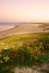 Cape Cod is famous for a number of things - beautiful beaches, presidential retreats, luxury real estate and delicious seafood - and if you ever find yourself visiting the cape, then there are two places most people will say you have to go: Martha's Vineyard and Nantucket.