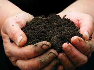 Collaboration, creativity help companies increase sustainability in the food sector