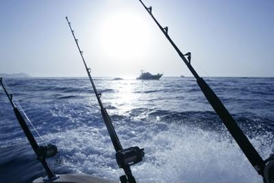 Experience the thrill of deep sea fishing in Palm Beach