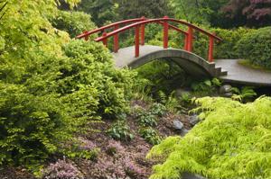 Gardening in Japan