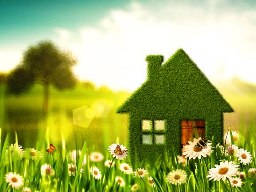 Considering going green? How to improve energy efficiency in your home