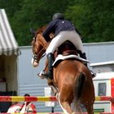 Hamptons Classic Horse Show draws affluent attendees