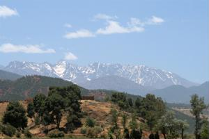 The Atlas Mountains stand watch over Marrakesh