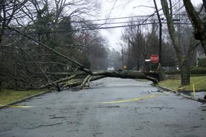 Potentially busy hurricane season underscores importance of disaster preparedness