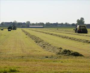 Difficult year ahead for US farmers