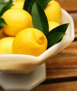 Journey to the lemon festival