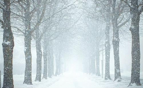 Learn how to stay healthy and happy this winter.