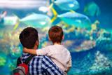 Make it a family trip to Monterey Bay Aquarium.