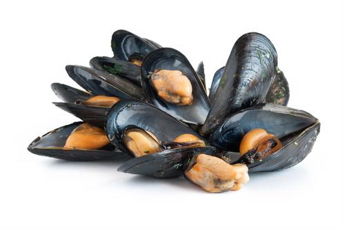 Mussels may help reduce muscle pain.