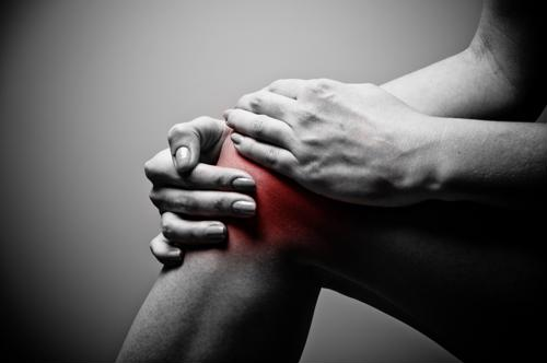 New ligament found in knee