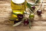 Olive oil tasting tours offered daily during January and February in Sonoma