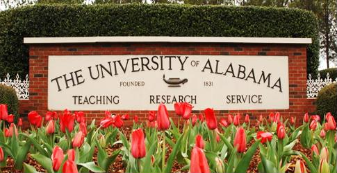 Once snubbed by Google Fiber, Alabama my become a fiber-optics hub regardless.