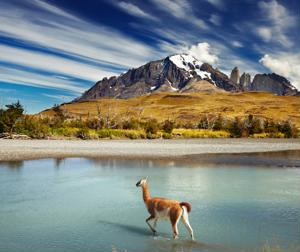 Patagonia is home to some of the most stunning views in the world