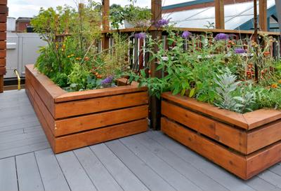 Rooftop gardens bring green space to San Francisco real estate