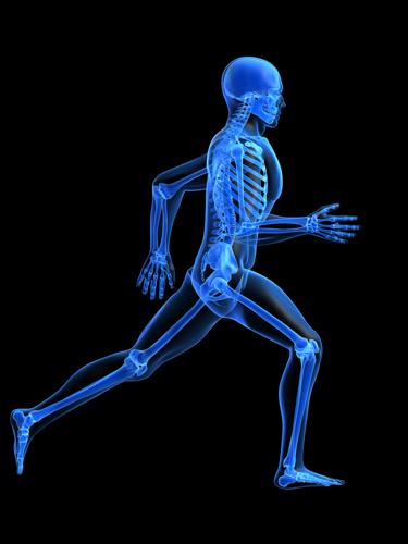 Sitting on the couch truly may be bad for you. Researchers from the University of Cambridge have found that since the invention of farming, inactivity has caused people to have weaker bones.