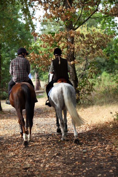 Spend an afternoon horseback riding and wine tasting in Santa Ynez