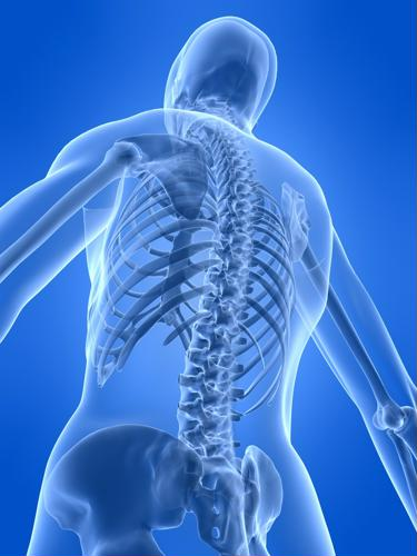 Spinal cord injuries are one of the most dangerous and damaging orthopaedic injuries a person can get, sometimes even resulting in full paralysis or partial loss of motor control due to the connection to the central nervous system and the brain.