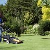 Taking care of your lawn, plants and other greenery on your property could increase its value.