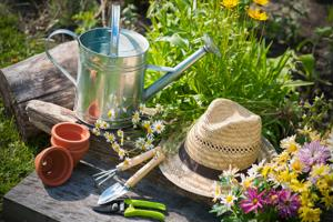 Top green gardening tips