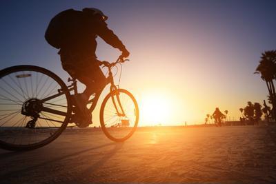 Where to go when taking a bike tour of Cape Cod