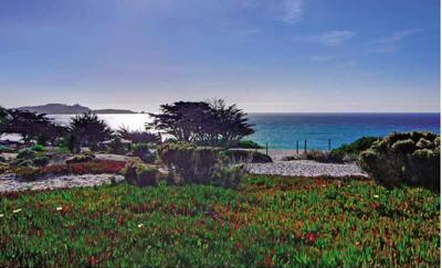 Carmel-by-the-Sea the way it was meant to be