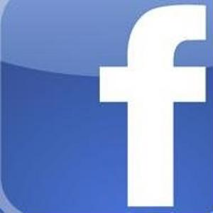 Facebook can provide travel ideas - India Travel News
