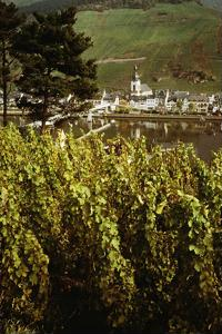 Germany rises as one of the world's best wine country regions - Holidays Travel News