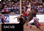 A cowboy rodeo in China? You betcha! - Beijing Travel News