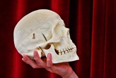 Sonoma Valley Shakespeare Company prepares for fall season
