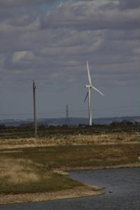 Wind industry expected to drastically grow by 2025