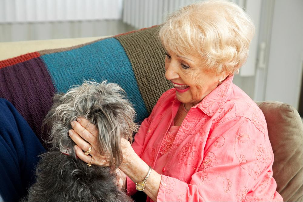 Seniors benefit from animal therapy