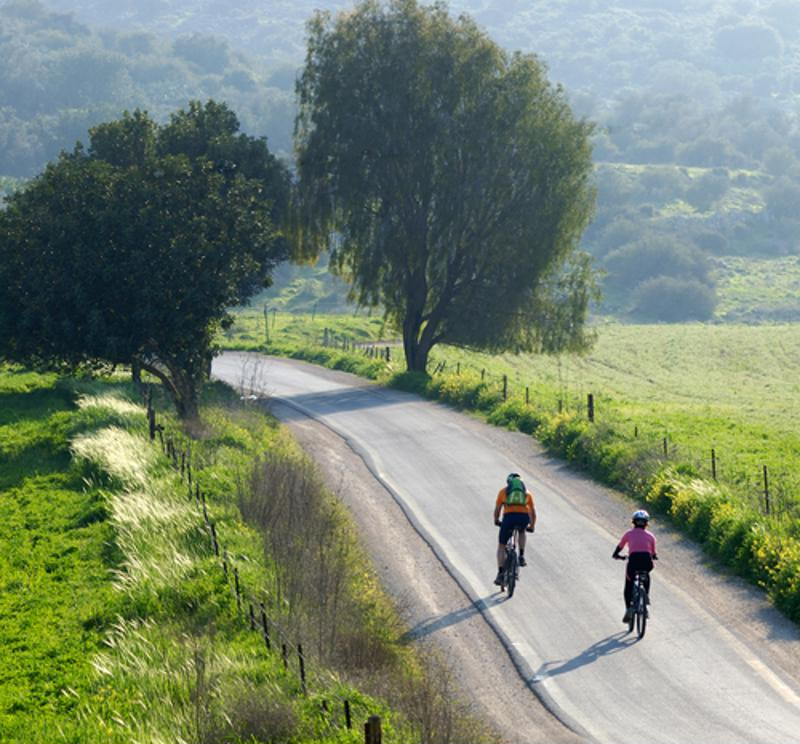 When you bike tour, you can travel and exercise at the same time.