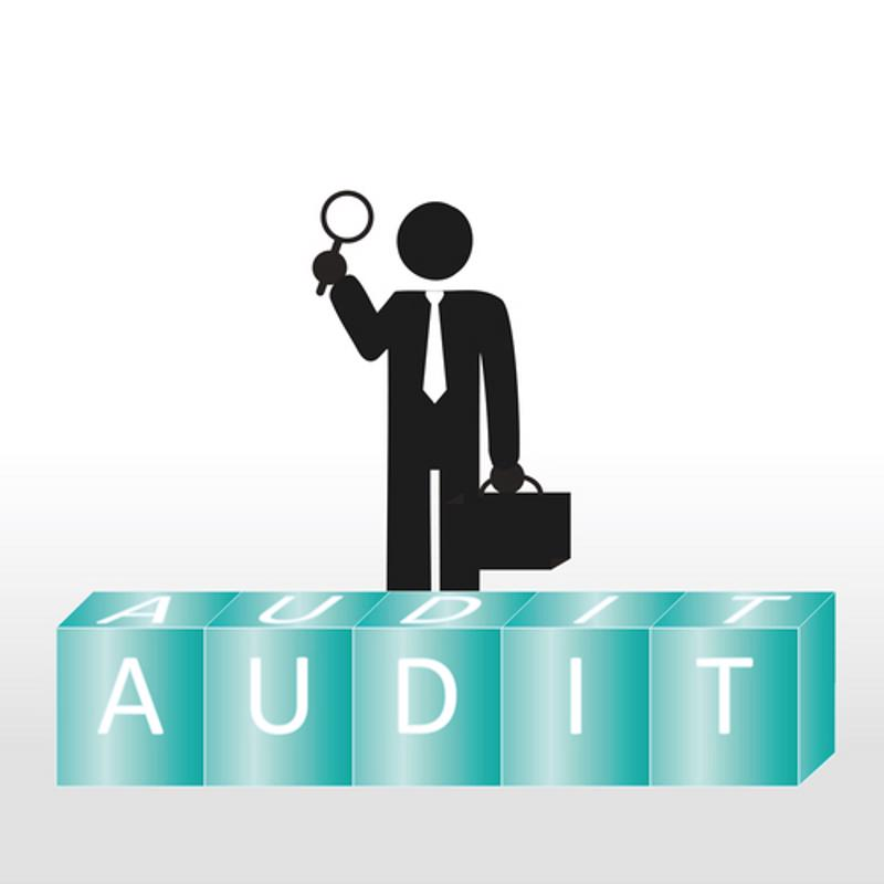 An audit is a formal inspection of accounts.