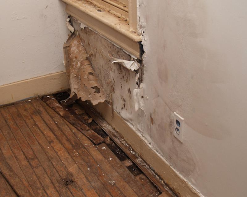 Check for signs of leaks before your home gets damaged.