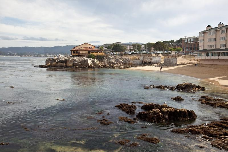 Monterey is one such region currently grappling with toxic algal growth.