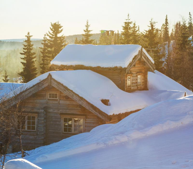 Tankless water heaters are perfect for cabin's limited size structure.