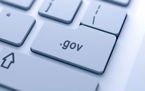 Service desk, Government