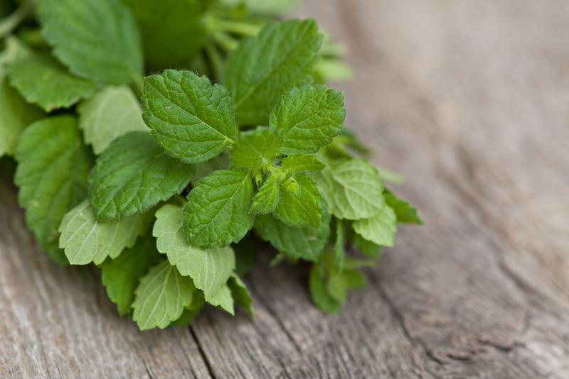 Use homegrown mint as an ingredient of a garnish in blended drinks.