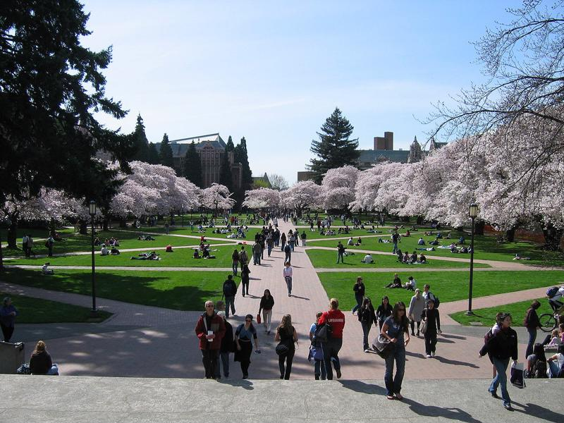 Mobile tour apps can enrich your campus tour experience.
