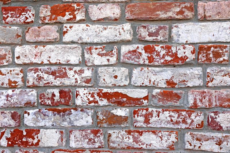 Efflorescence commonly forms on porous building materials like brick.