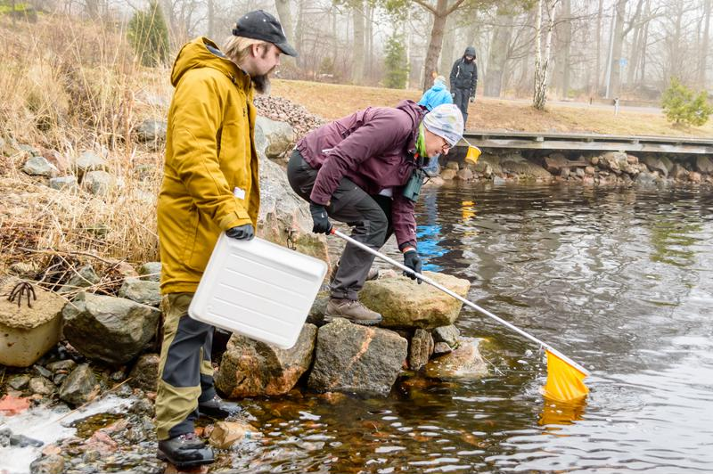 For the NCCA 2015, samples were collected from more than 50 sites in the Great Lakes.
