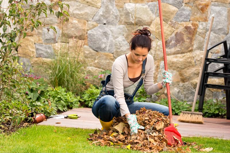 Raking leaves is a chore that will help you burn calories.