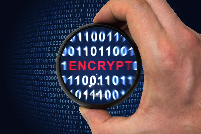 Any data that travels over the Internet can be encrypted, voice included.