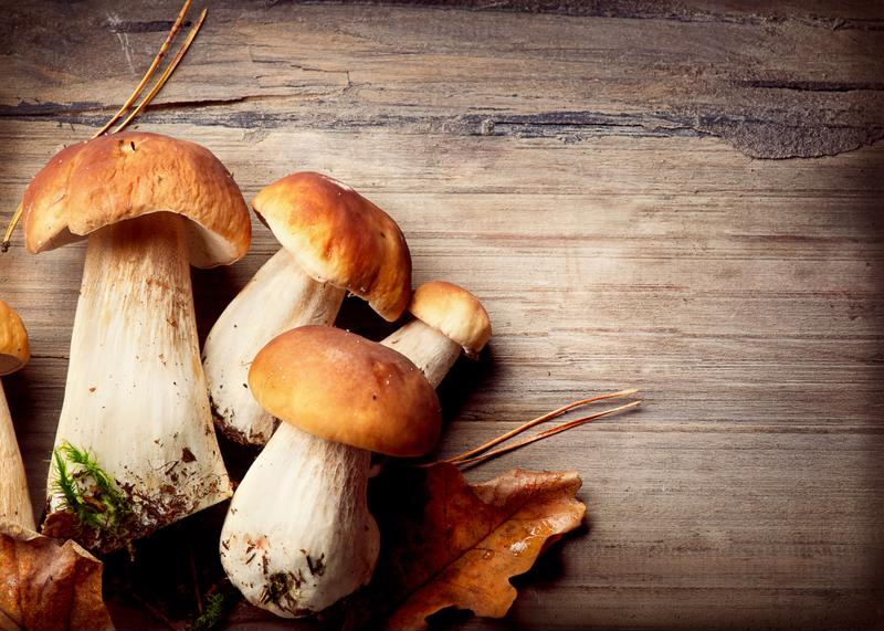Mushrooms are a savory addition to slow-cooked bread pudding.