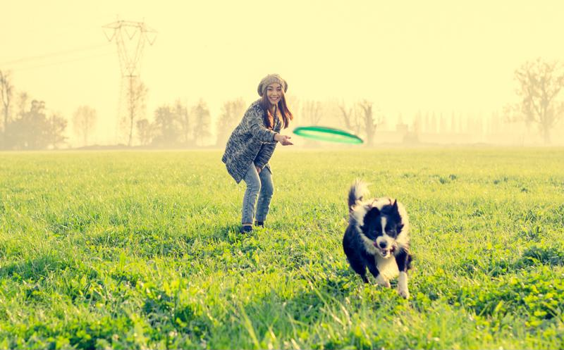 Playing with your dog can be a great workout.