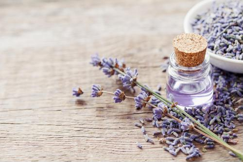 Aromatherapy may be beneficial in senior care